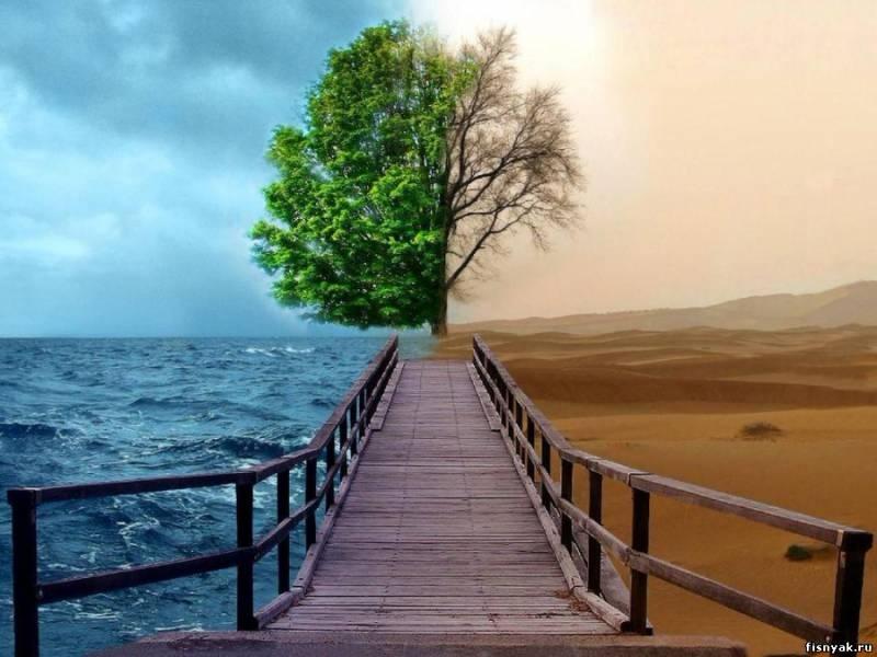 Психологические услуги… Как найти хорошего психолога?