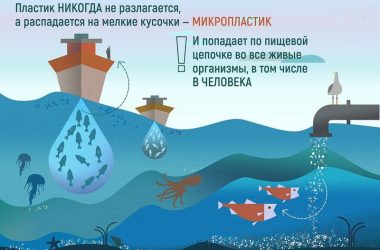 Чем опасен микропластик?
